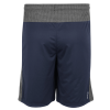 Cover Image for Adidas Climacool Aeroknit Shorts