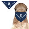 Cover Image for Pet Bandana